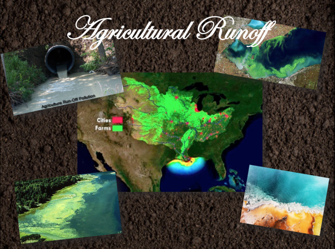 Agricultural Runoff