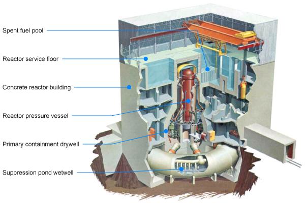 Fukushima Reactor